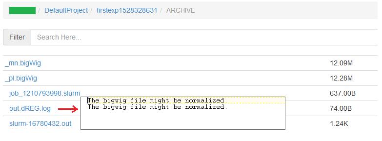 Bigwig error(1)